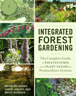 Cover-Photo-Integrated-Forest-Gardening jpg